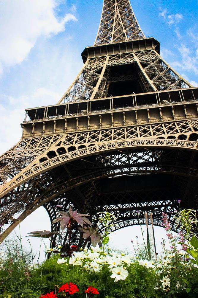 Flower bed set below the Eiffel Tower